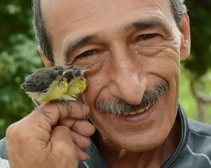 adotar-#belicosa55,#passarinho