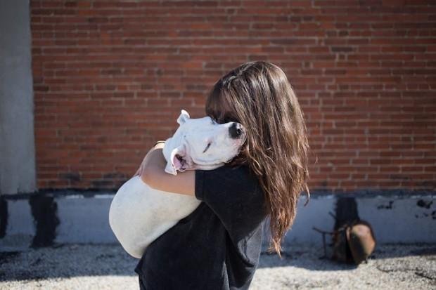 Animais_adotados-#belicosa55