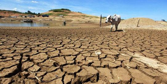climate-change-seca-#Belicosa55