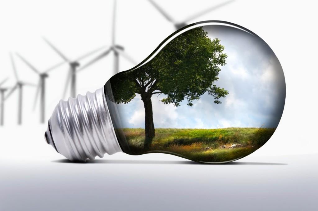 eco-inovacao-banco-ideias-verdes-Belicosa55